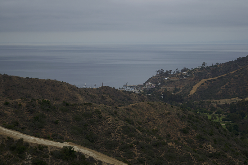 Overlooking Avalon from the top of the Hermit Gulch Trail in Catalina Island