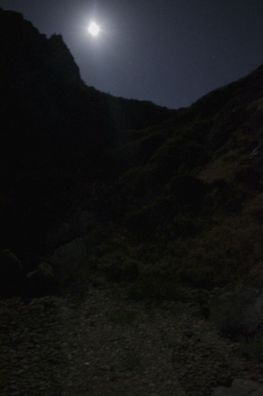 Moonlit Night at Parson's Landing, Site #1, Catalina Island