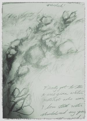TCT-trail-sketch