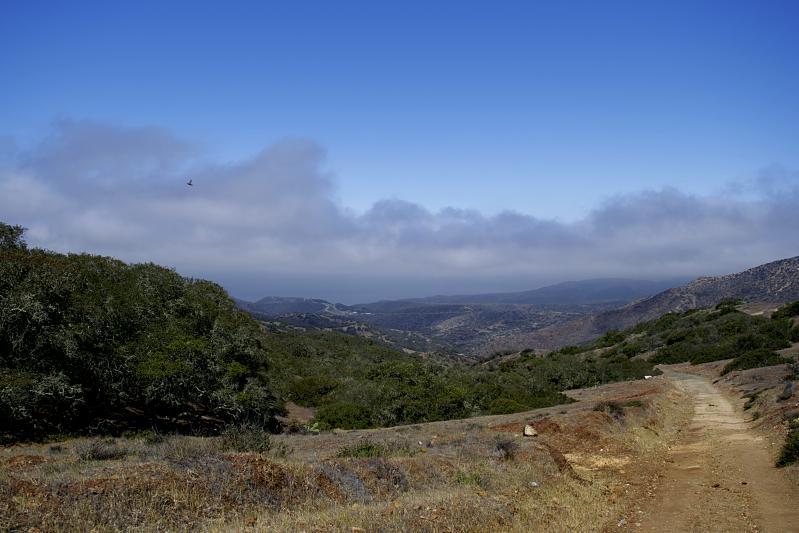 Hiking the Trans-Catalina Trail Down BlackJack Mountain into Cottonwood Canyon