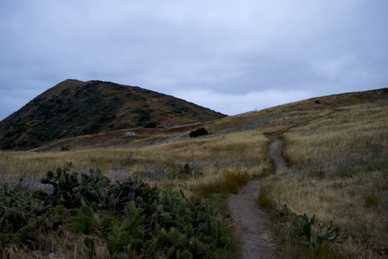 Hiking back to Two Harbors from Parson's Beach in Catalina Island