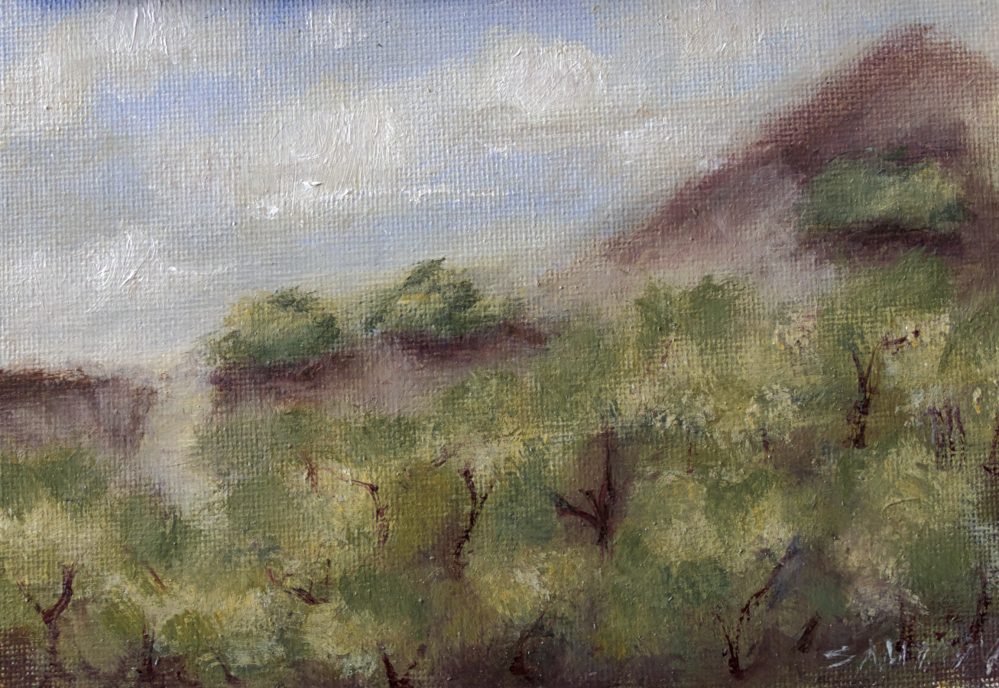 pointreyes-pleinair4